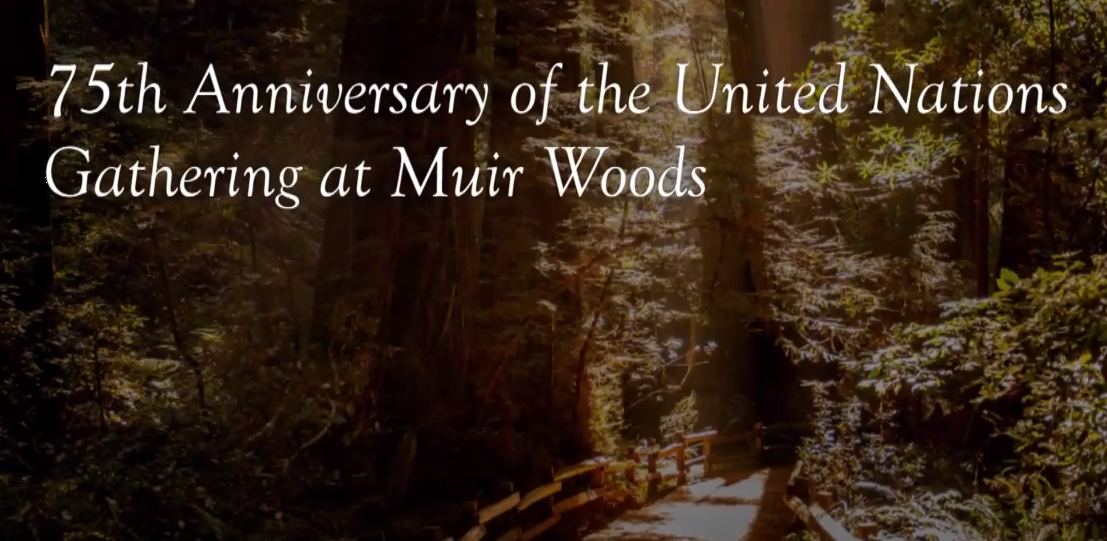 Muir Woods 75th Anniversary